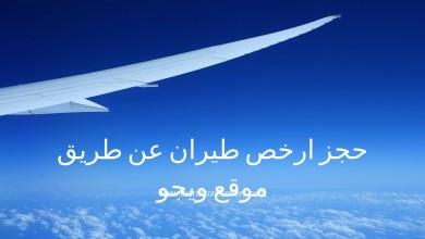 حجز ارخص طيران عن طريق موقع ويجو (1)