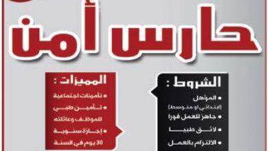 Photo of وظائف جريدة الوسيلة الرياض اخر عدد