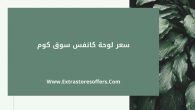 Photo of سعر لوحة كانفس سوق كوم ومواصفاتها